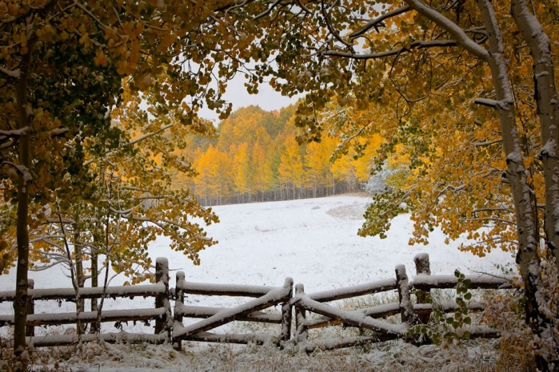 Snow along Owl Creek Road on Friday, Oct. 4, 2013.
