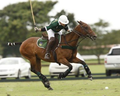 Jeff Hildebrand playing polo at the International Polo Club in Wellington, Fla., on March 1, 2012. His Tonkawa polo team won the high-level, 20-goal Iglehart Cup.