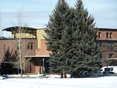 """The Limelight hotel, owned by Aspen Skiing Co. Approved as a moderately priced hotel, it is now considered a """"deluxe"""" hotel. And yet, compared to four- and five-star hotels in Aspen, it is probably moderately priced, especially in the off-season."""