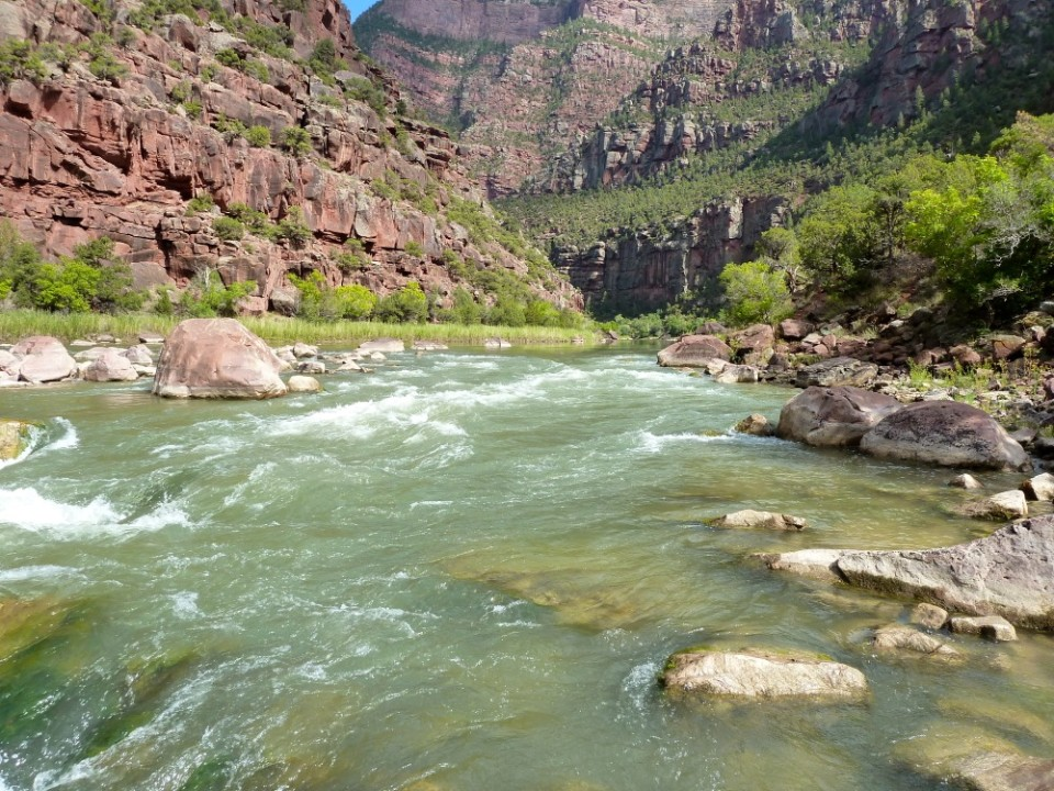 The Green River below Flaming Gorge dam. Looking upstream, at Hell's Half Mile.