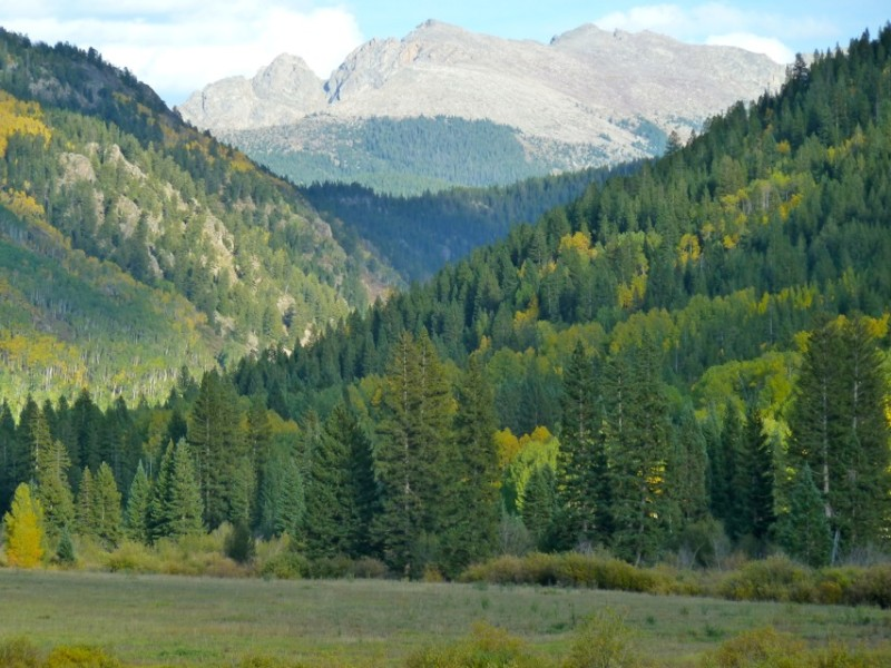 Slopes covered in aspens and evergreens flank the Hunter Creek valley floor above Aspen.