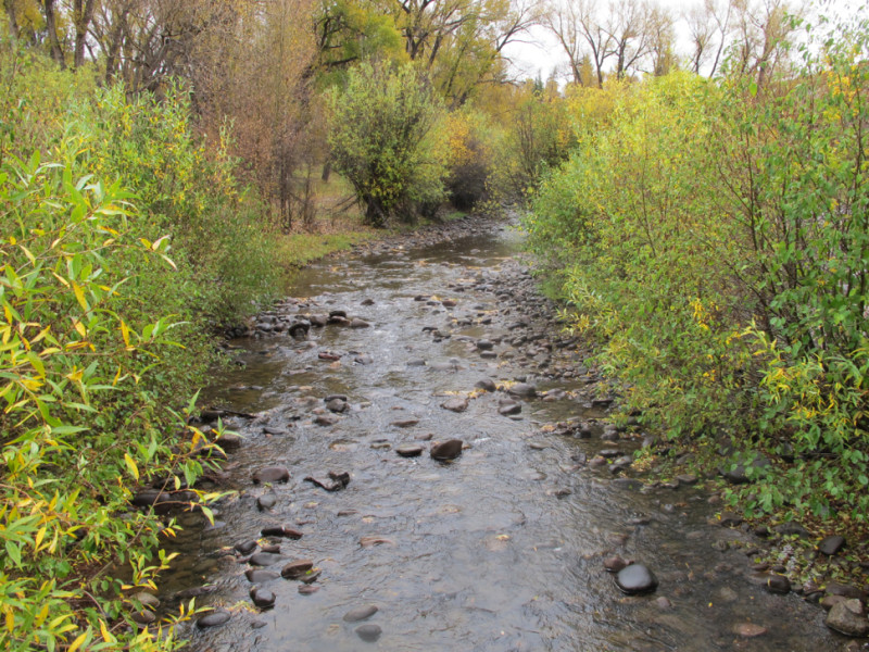 The Little Cimarron River, in a wet condition.