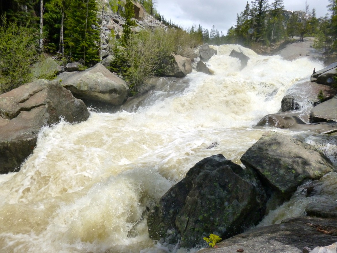 The upper Roaring Fork River lives up to its name on June 11, 2015 as it roars down the steep descent at the Grottos area east of Aspen.