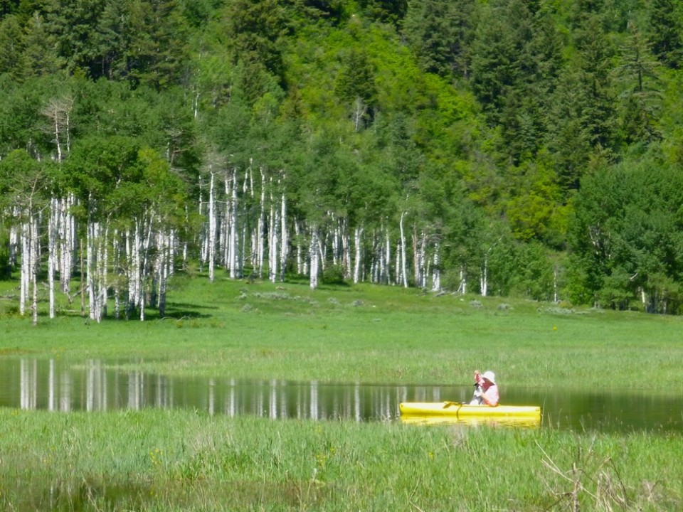 An Aspen resident on June 17, 2015  enjoys the newly formed backwaters of the Roaring Fork River along the Stillwater section east of Aspen.