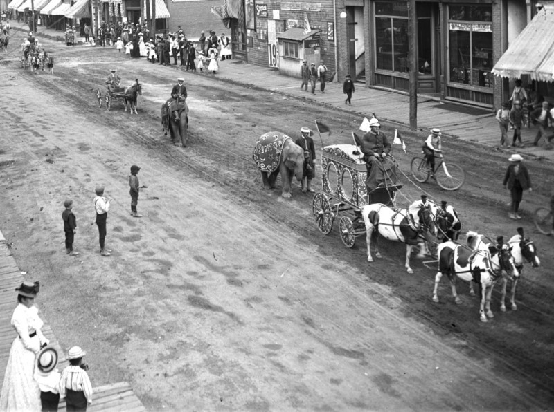 The Gentry Dog and Pony Show came to Aspen in 1898, and they walked two elephants on Cooper Avenue, just east of Galena Street. The first elephant's name, Pinto, can be seen on its blanket