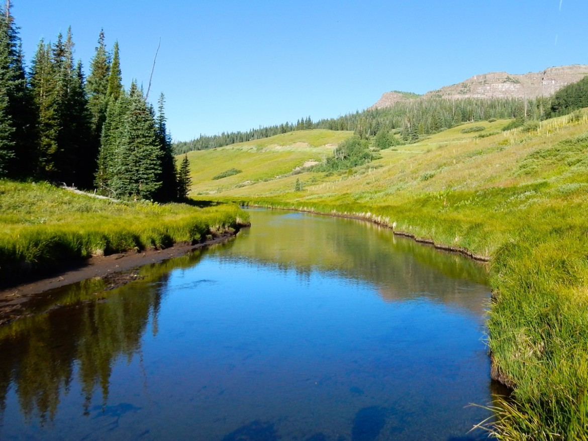 The Western Slope headwaters of the Yampa River, which legally still has water that could be put to beneficial use on the Front Range.