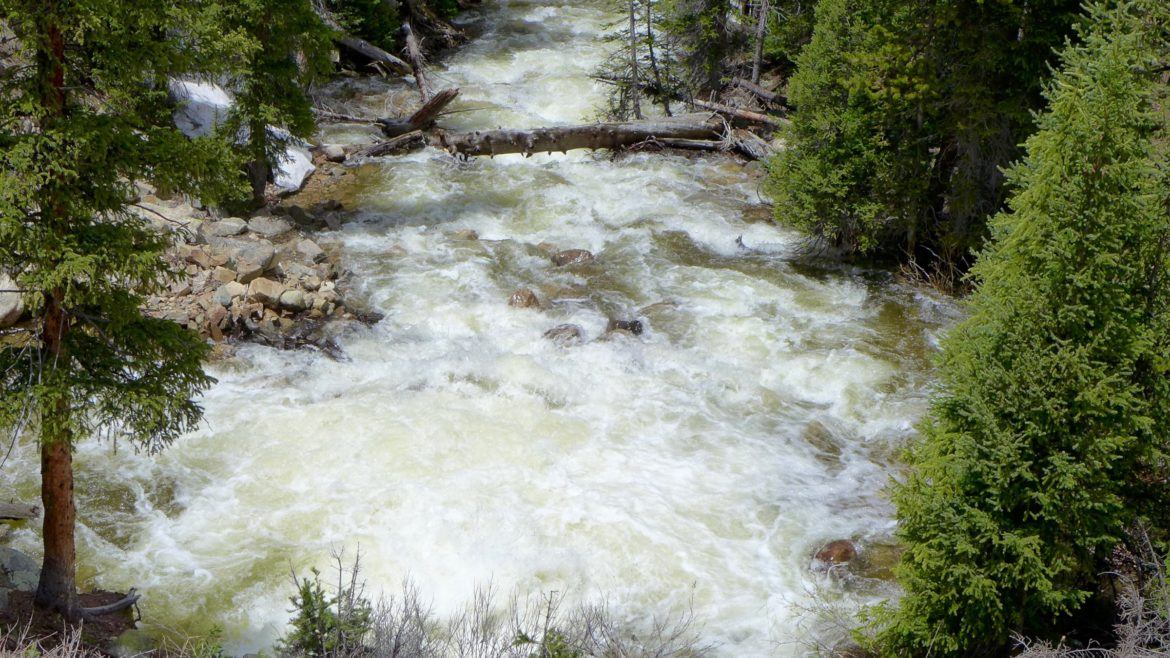 Flows in the main stem of the Roaring Fork River on Tuesday, June 14, 2016 below the diversion dam on the upper Roaring Fork. The flows, shown heading toward Aspen, include about 250 cfs from Lost Man Creek and the portion of the main stem of the Fork that was previously being diverted.