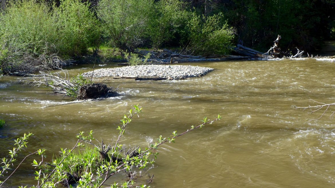 Lincoln Creek, after 5: 30 p.m. on Thursday, June 16, 2016, after the Twin Lakes Tunnel was closed. A surge of turbid pushy water came down Lincoln Creek and reached the Fork about 5:30 p.m. on June 16.