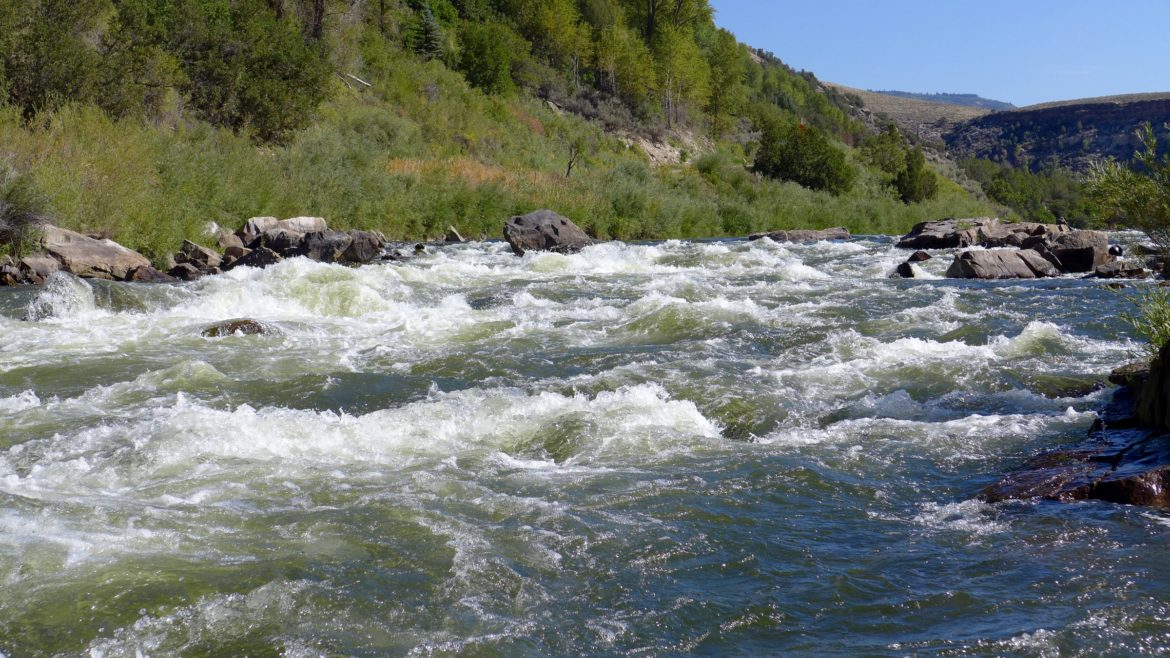 colorado river personhood case pulled by proponents aspen journalism